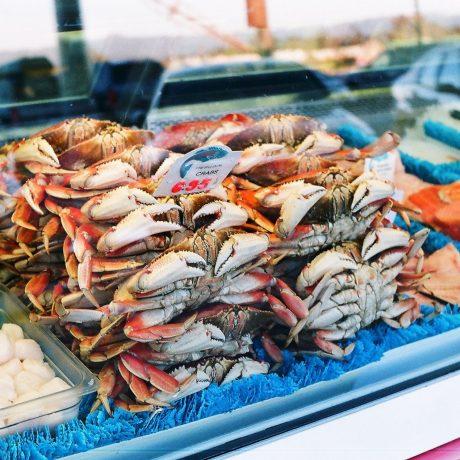 pile of edible crabs